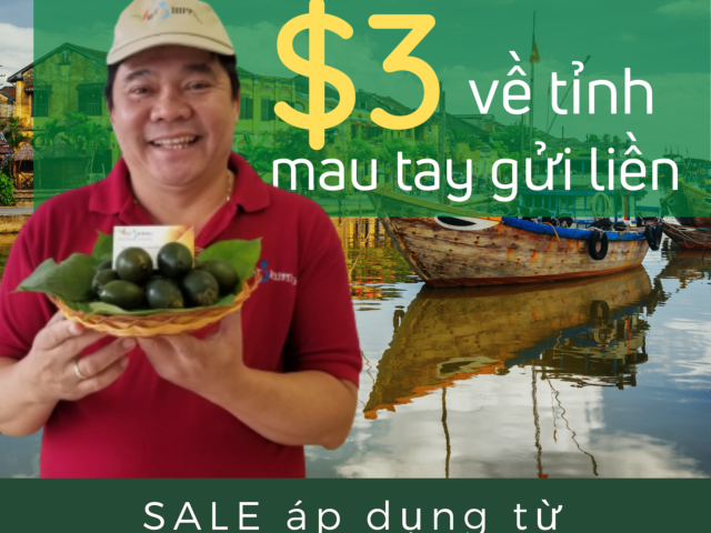 https://vietshipping.us/wp-content/uploads/2020/07/Trầu-Cau-07_20201-640x480.png
